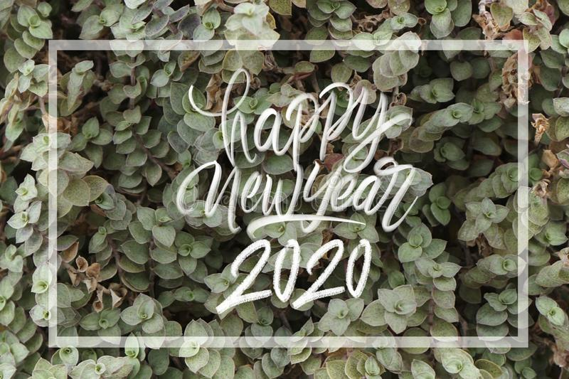 Happy new year 2020. Hand latter with frame and beautiful floral as a background royalty free stock photography